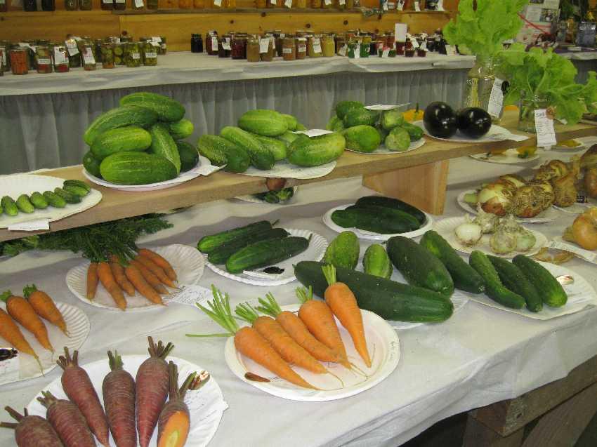 January 2012 Exhibit-hall-veggies-canning