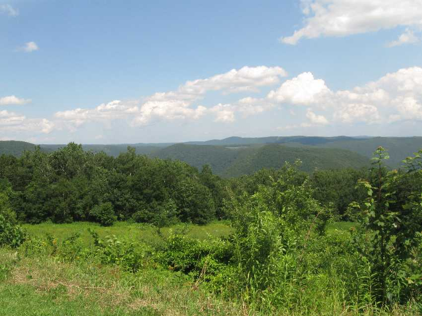 View from Burnt Hill