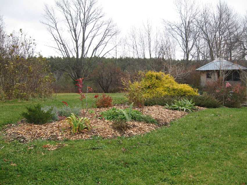 The Lawn Bed November 1
