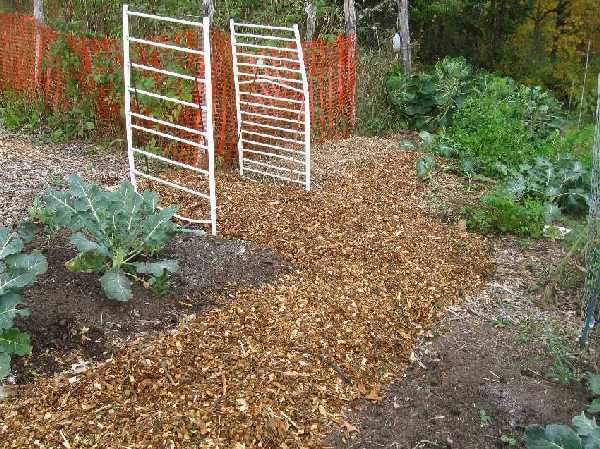 Wood Chips For Landscaping ~ Wood chips and mulch more