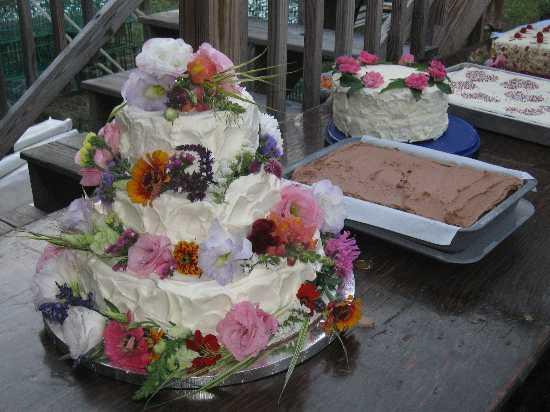 Pin Weed Shoes We Love The Herb Marijuana Hemp Cannabis Site Cake On Pinterest