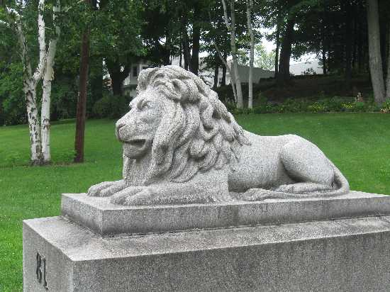 What\'s Behind the Lion?