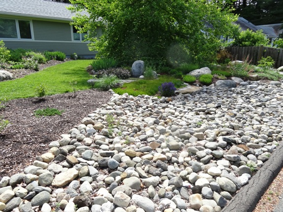 An Unusual Rock Garden On The Forbes Library Tour