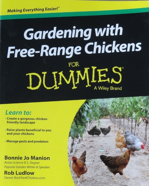 Chickens Commonweeder