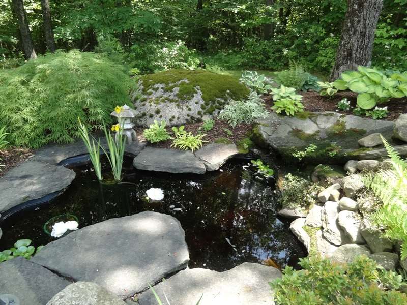 Stream and stone pond