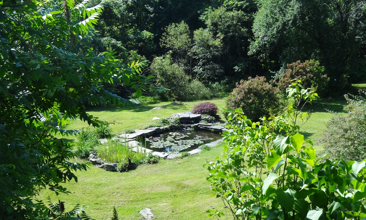 Waterlily Pond and Bog Garden