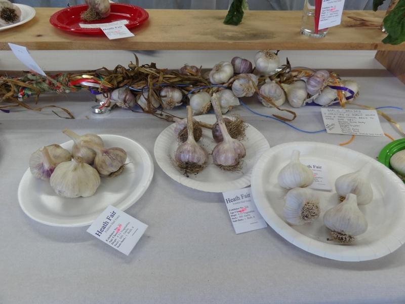 Heath Fair Garlic