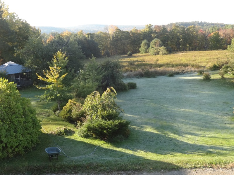 First hard frost - October 6, 2014