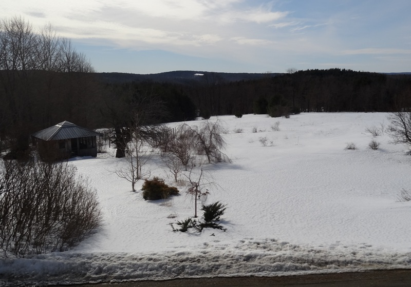 View from the Bedroom Window  March 16, 2015
