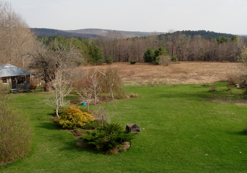 View from the Bedroom window  May 4, 2015