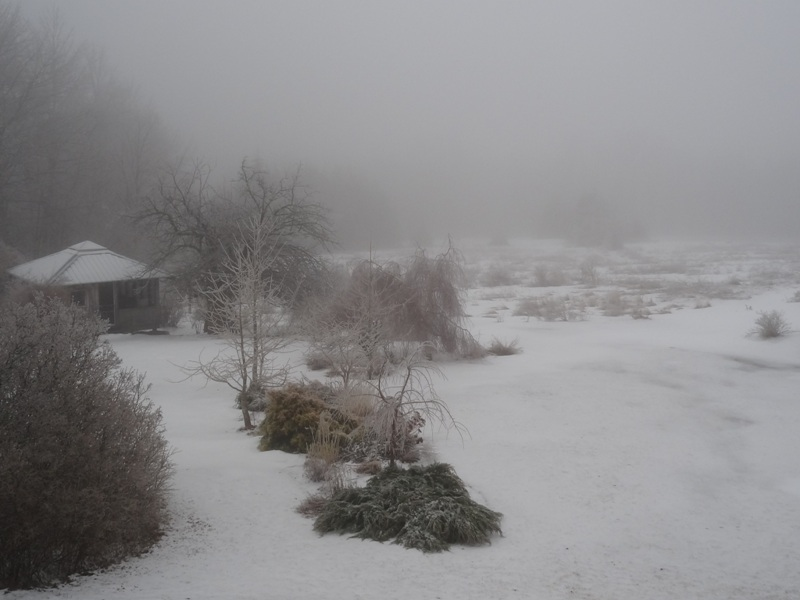 View from the bedroom window April 10, 2015