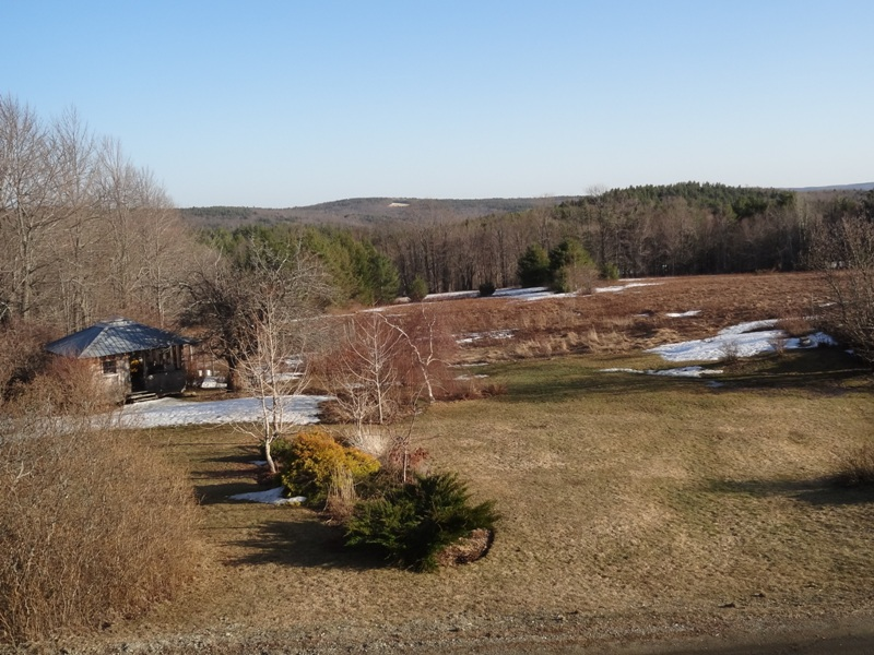 View from the Bedroom window April 12, 2015