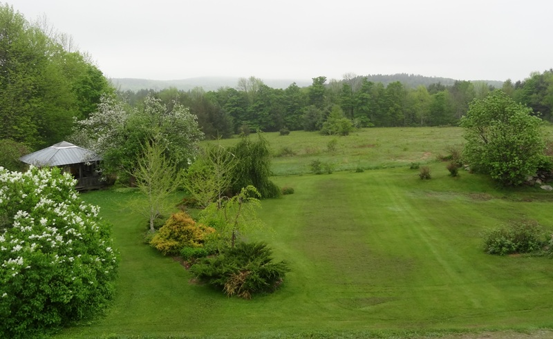 View from the bedroom window May 17, 2015