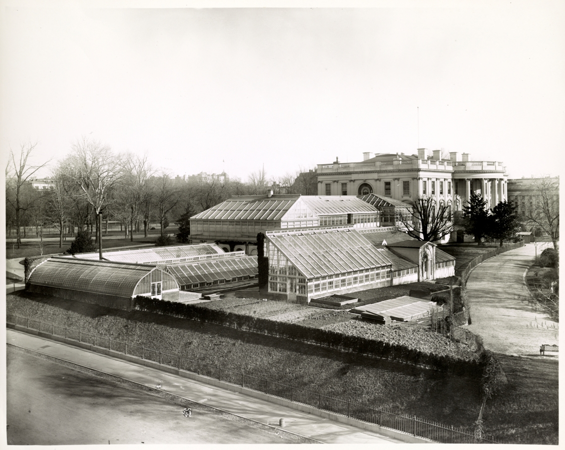 At one time there were great greenhouse for food and  cut flower production, as well as a beautiful space to visit.  Photo courtesy of Library of Congress