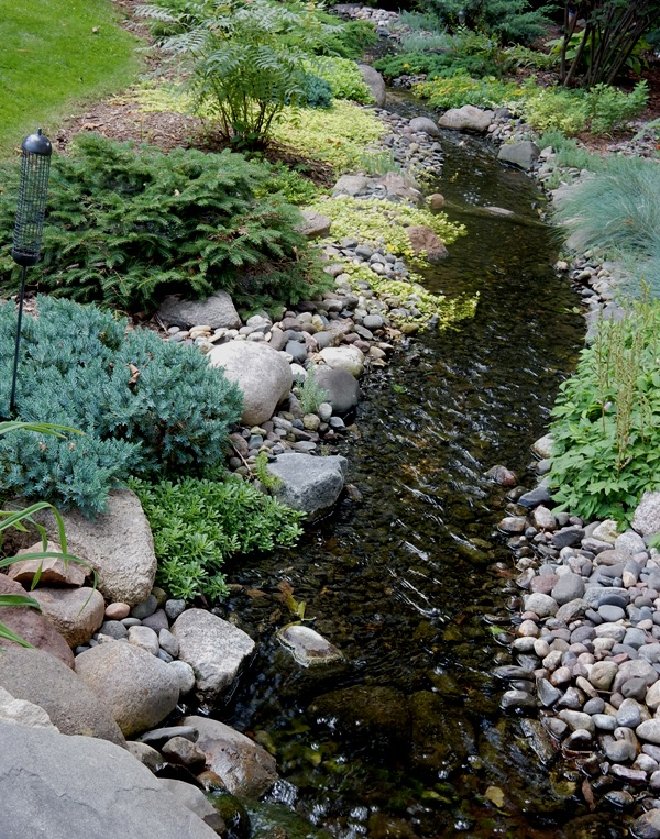 Linda's 100 foot stream