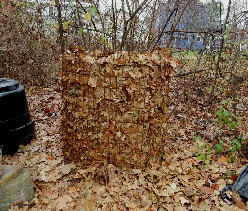 2015 leaves spending the year composting
