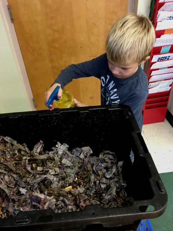 First grader Ben caring for the worm bin in his classroom