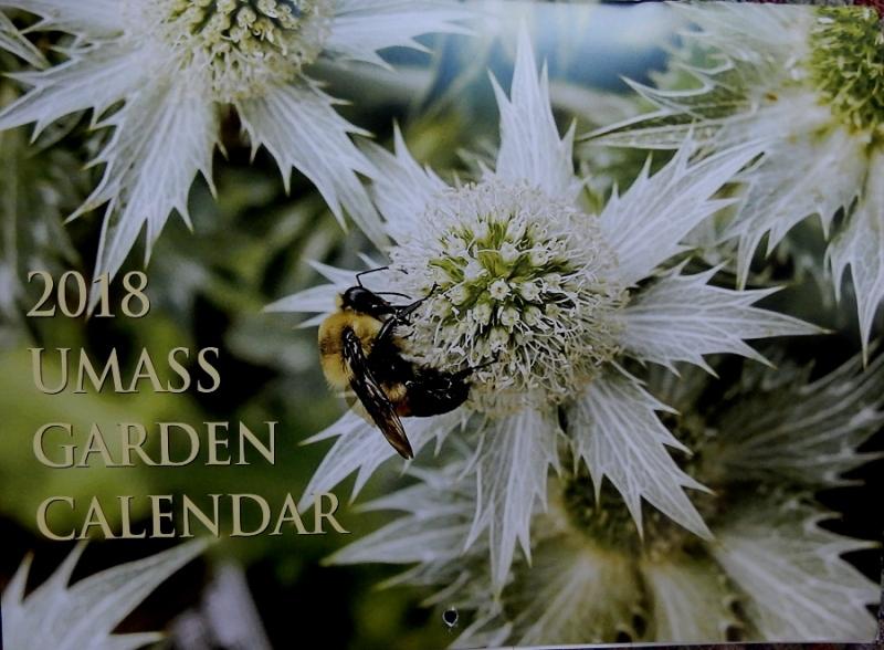 10 30 Umass Calendar Commonweeder